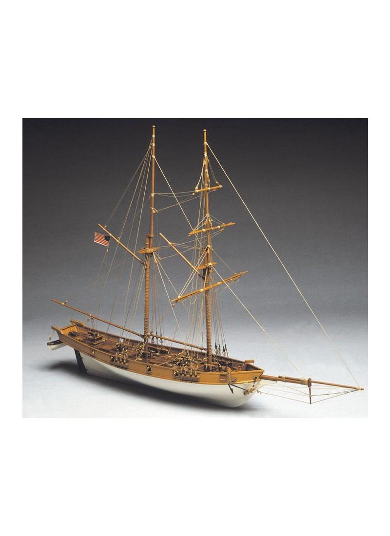 Albatros kit n› 5